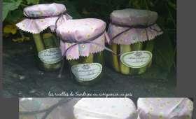 Conserves de cornichons au vinaigre