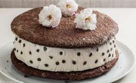 Torta biscotto gelato