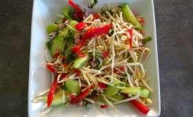 Salade de germes de mungo, concombres et poivron rouge de Gordon Ramsay