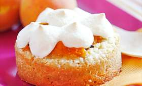 Tartelettes aux abricots meringuées