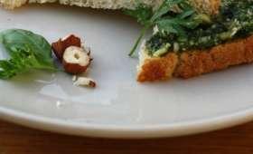 Pesto aux fanes de carottes & noisettes