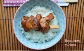 Brochettes yakitori