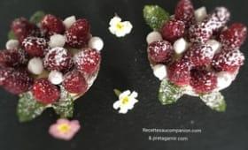 Tartelettes spéculoos framboises et ses perles de meringue