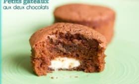 Petits gâteaux aux deux chocolats