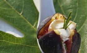 Figues rôties au chèvre, miel et romarin