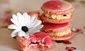 Macarons vanille framboise