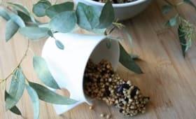 Granola de sarrasin au cacao