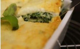 Lasagnes épinards et ricotta