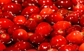 Cranberries en vrac