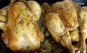 Poulets rôtis sur plaque de cuisson