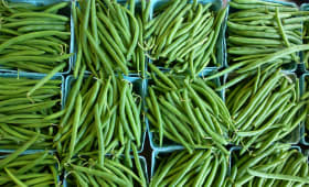 Haricots verts en barquettes