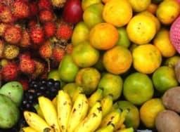 Etal de fruits exotiques