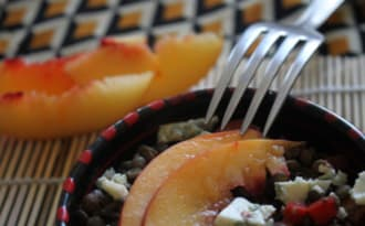 Salade de lentilles vertes aux poivron, nectarine & bleu