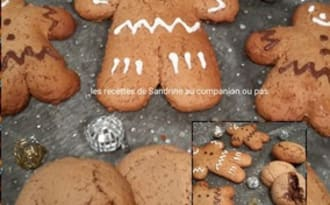 Biscuits au pain d'épices polonais ou Pierniczki de noël
