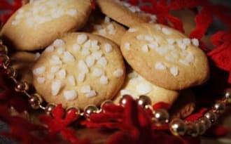 Oursin aux perles de sucre