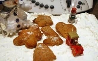 Petits gâteaux de Nöel chocolat praliné noix de coco