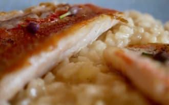 Filets de rougets barbet et risotto au safran