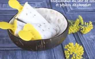 Popsicles ou esquimaux au lait de coco
