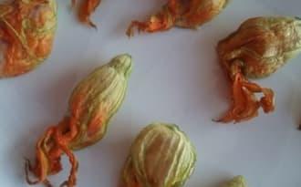 Fleurs de courgettes farcies au fromage de chèvre et jambon