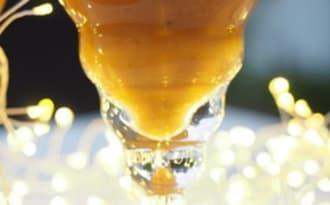 Verrines de Noël facile aux cèpes et thé