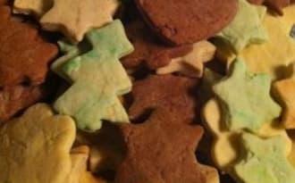 Mes petits biscuits de noël