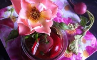 Pickles de radis rose