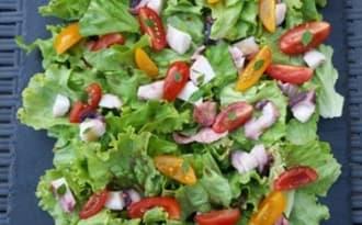 Salade d'encornets