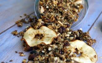 Granola noisettes, pommes séchées et petites graines