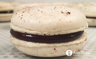 Macarons au chocolat noir sans gluten et vegan