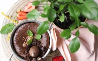 Gâteau au chocolat tout fondant