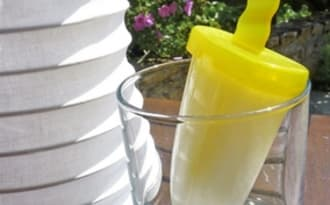 Lemonade popsicles