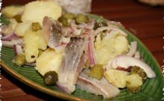 Salade de harengs aux pommes de terre