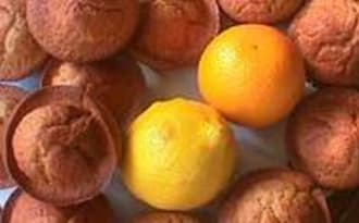 Muffins aux agrumes