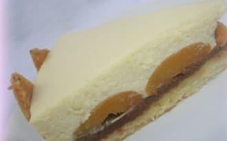 Bavarois chocolat blanc/amandes, ganache caramel/gavottes et oreillons d'abricots