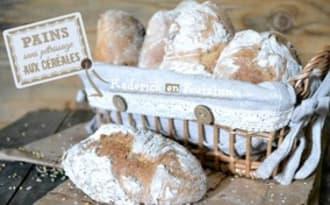 Mes petits pains express sans pétrissage aux céréales