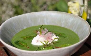 La soupe froide de fanes de radis et raifort