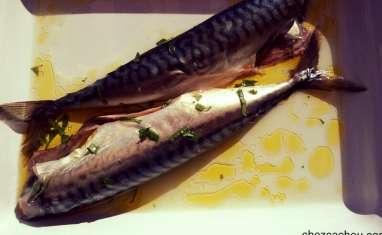 Maquereaux marinés au basilic cuits à la plancha