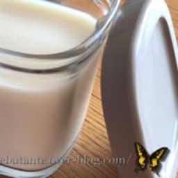 Yaourts au lait concentré non sucré