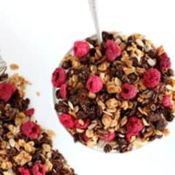 Granola sans sucre cacao et framboises