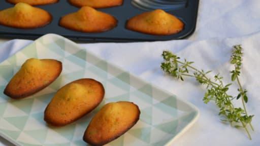 Madeleine miel et thym citron