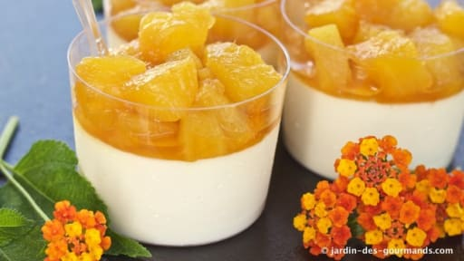 Panna Cotta à l'ananas