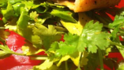 Samosas aux légumes