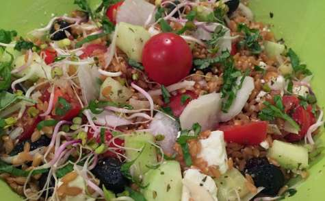 Salade de petit épeautre à la grecque