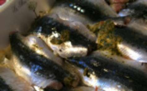 Sardines à la coriandre
