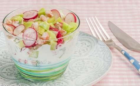Tzatziki aux langoustines, radis et concombre
