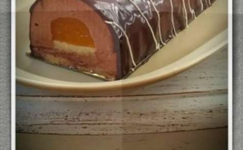 Bûche bavaroise au chocolat et mandarine