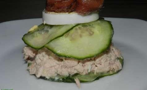 Hamburger de concombre fourré au thon