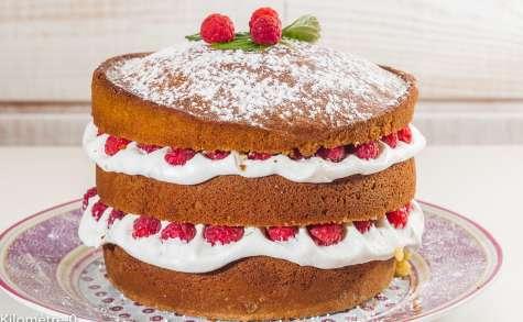 Gâteau gourmand aux framboises