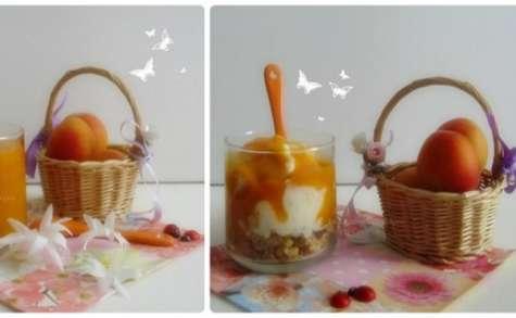 Frozen Yogurt à l'Abricot et son Coulis d'Abricots Vanillé