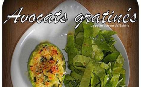 Avocats gratinés